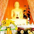 Buddhistischer Maha Vihara e.V.