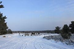 Winterlandschaft im Höpen